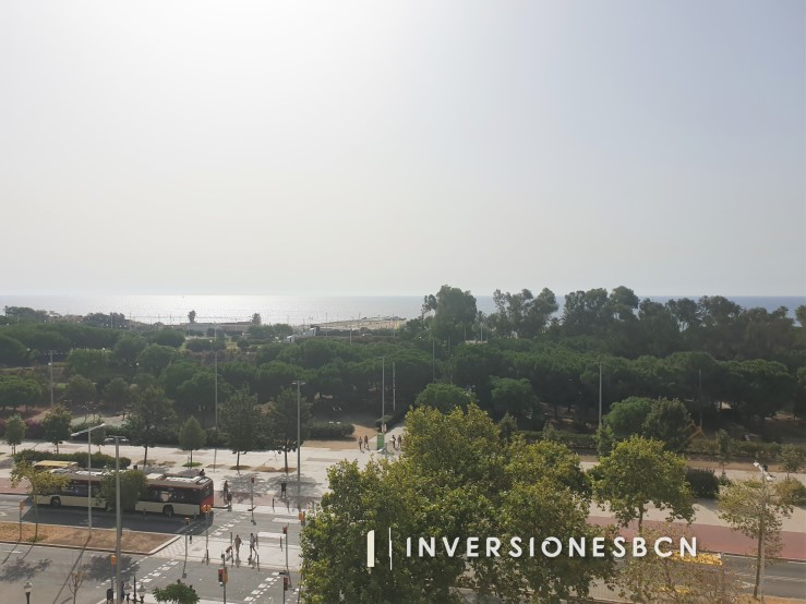 Furnished apartment in El Poblenou, on Paseo de Calvell